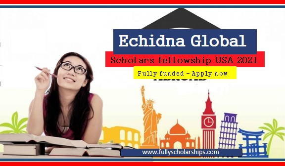 Global Scholars fellowship program US 2021