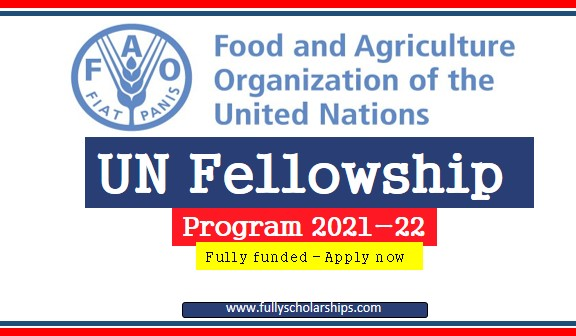 UN Fellowship Program 2021-2022